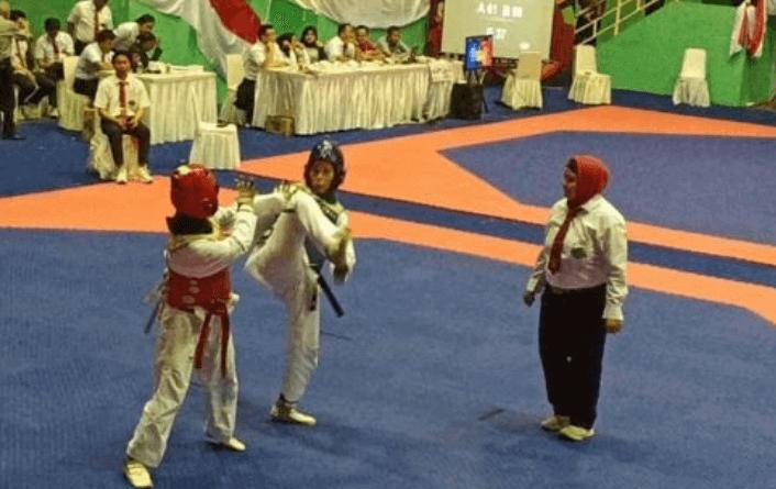 Kejuaraan The Kick Indonesian's Championship 2019